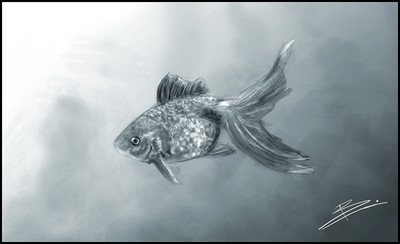Speed_Painting___Fish_by_Blinck.jpg
